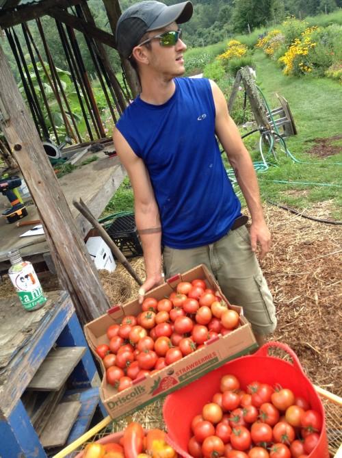 Landscape Gardening Apprenticeships : Garden apprenticeship karm? ch?ling