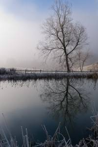 Winter Pond Reflection