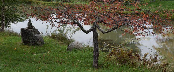Karme Choling Retreat Center's pond