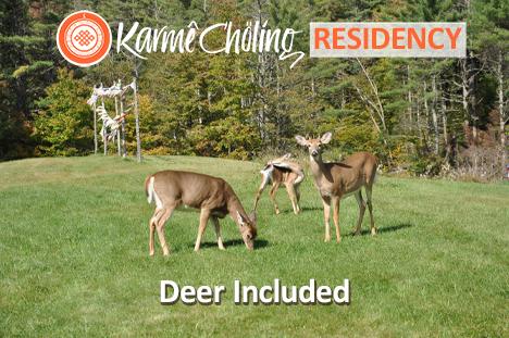 Deer Included